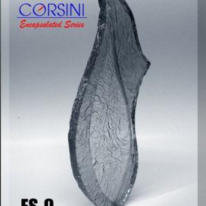 Plaque ES-9