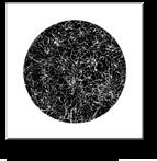 GTP-WEB BLACK